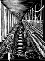 7.1 Textile Mill N.E